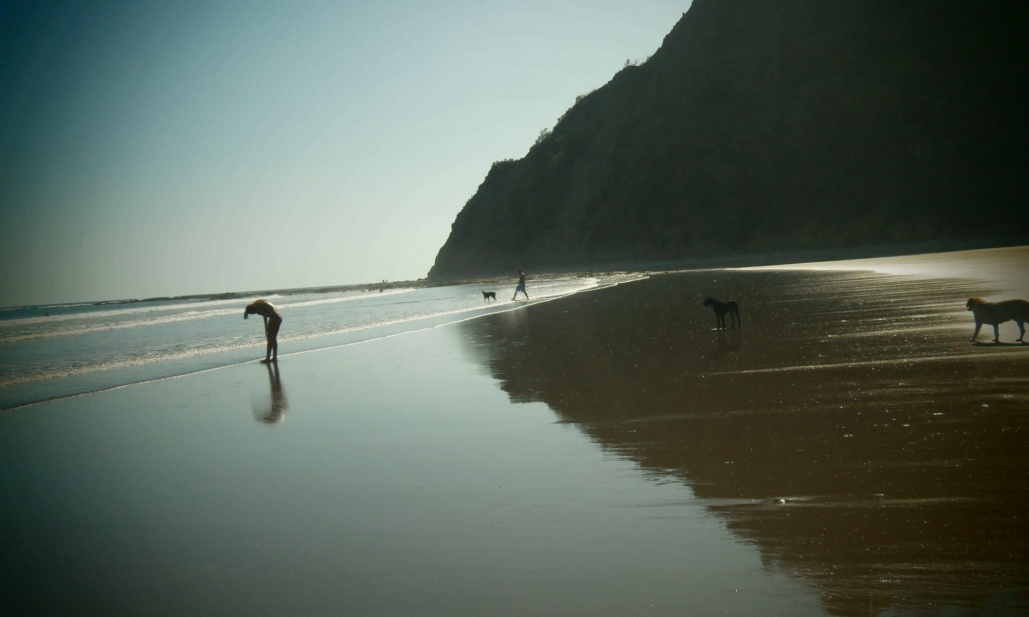 Apartamentos y Habitaciones, Costa_Rica_playa_buena_vista