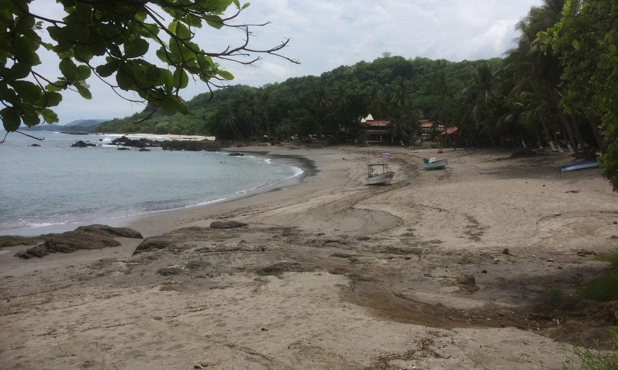 Réservation chambre Costa Rica Samara Cocodrilo