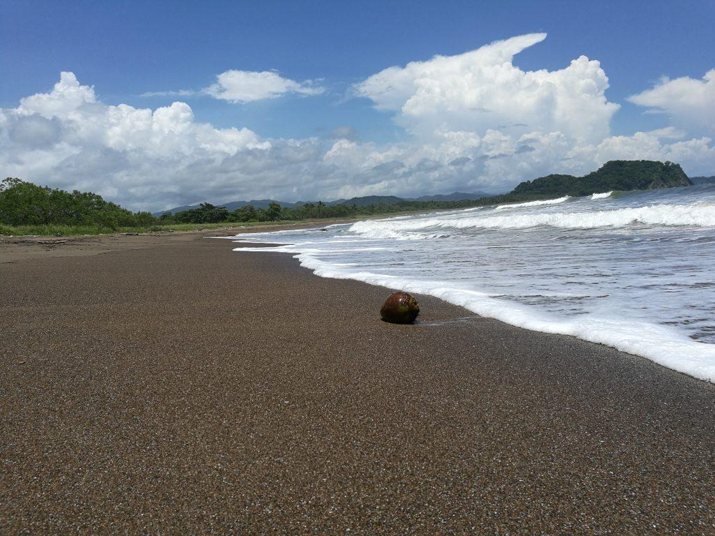 Ausflüge und Touren zum Playa Buena Vista, Samara, Costa Rica
