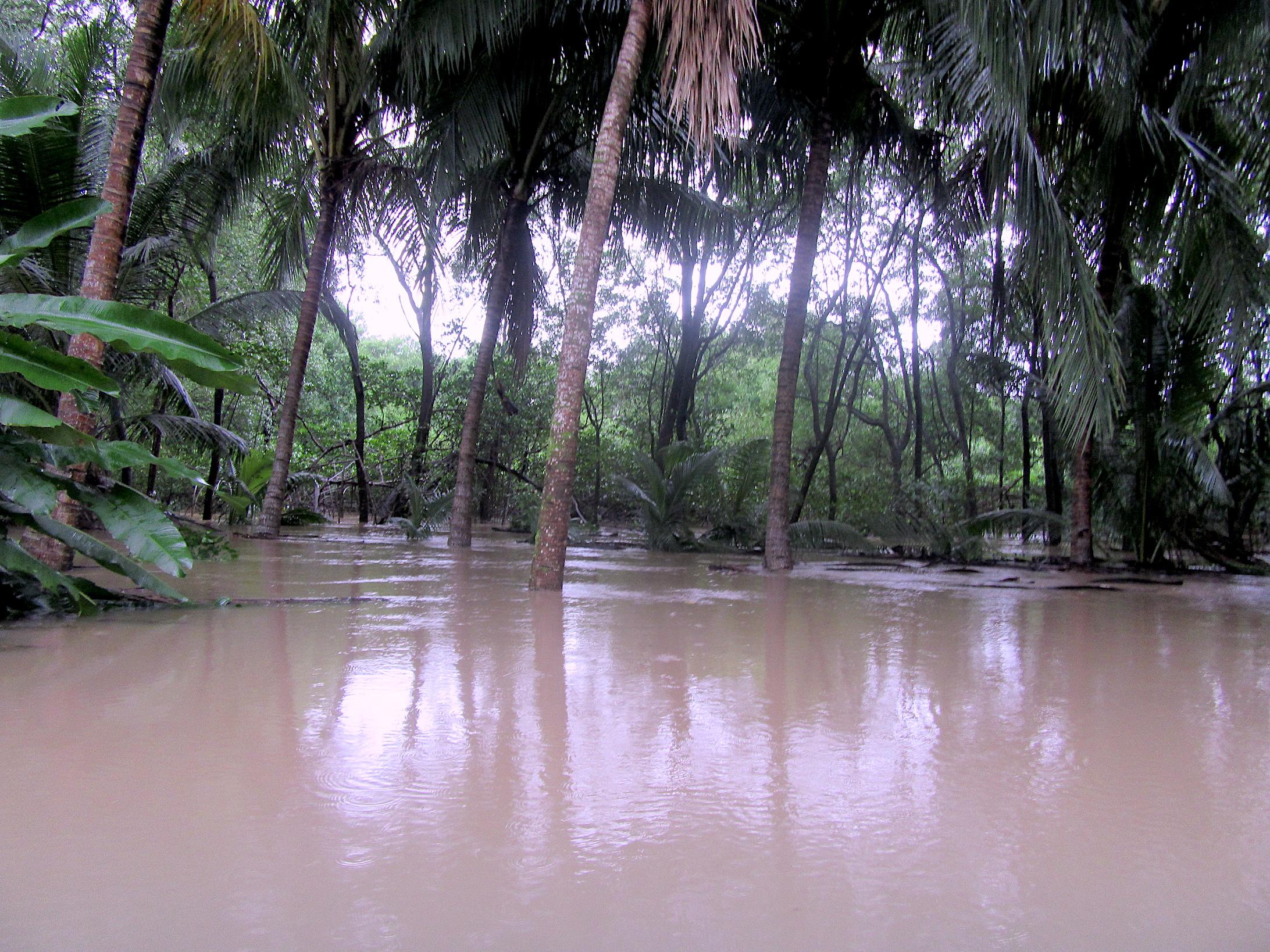 Wetter Costa Rica Samara