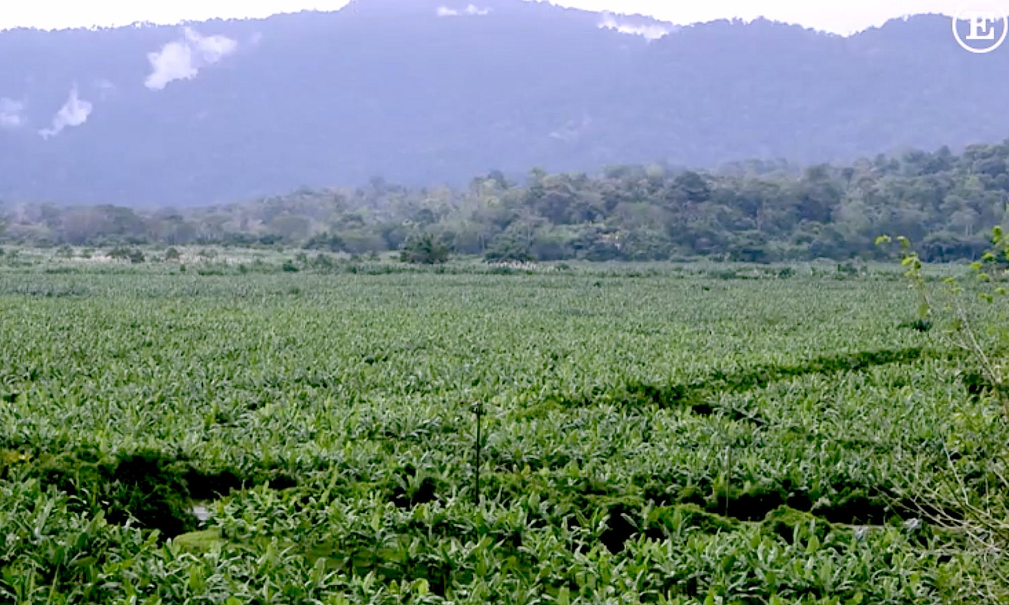 Naturschutz in Costa Rica