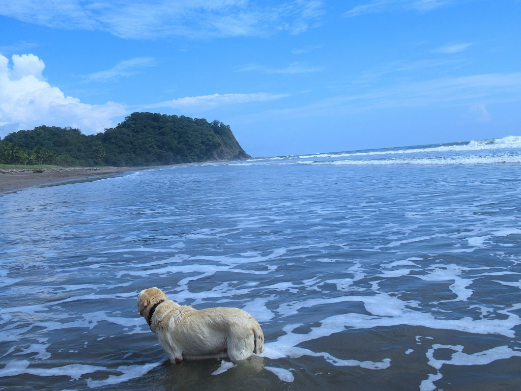 Urlaub am Meer Costa Rica
