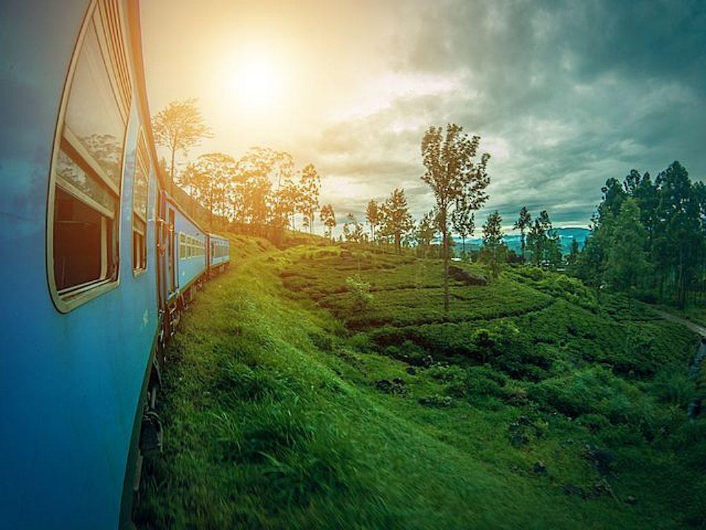 Mit der Eisenbahn durch den Dschungel rauschen